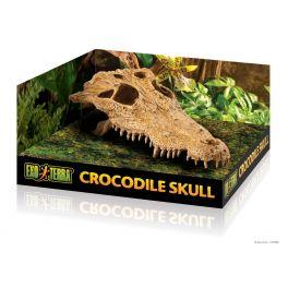 Exo Terra Crocodile Skull.