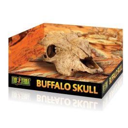 Exo Terra Buffalo Skull.