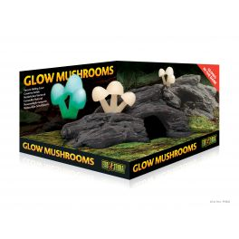 Glow Mushrooms