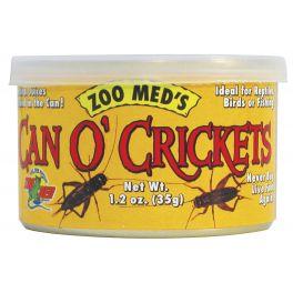 Insectos enlatados, Zoomed. Varios.
