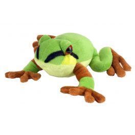 Rana Arbrícola del Pacífico (Pacific tree frog)