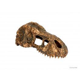 Dino T-Rex Skull, Exo Terra.