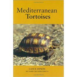 Mediterranean Tortoise. Lance Jepson.