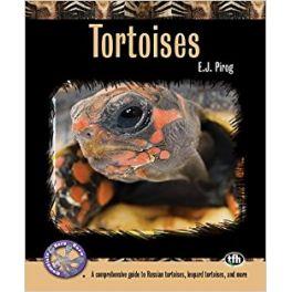 TFH Complete Herp Care: Tortoises.