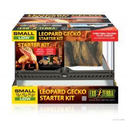 Gecko leopardo. Kit de Incio Terrario EXO TERRA .