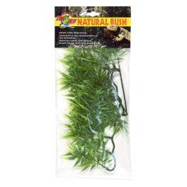 Cannabis – Natural Bush Plant, Zoomed.