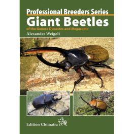 Giant Beetles of the Genera Dynastes and Megasoma