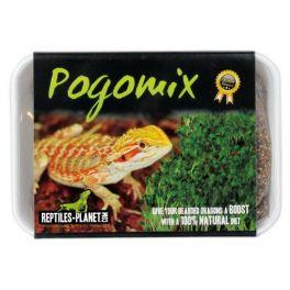 Tortoisemix - Mezcla de semillas para germinar, Reptiles Planet.