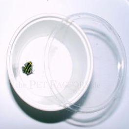 Tarrina redonda pequeña (paquete de 50)