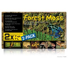 Exo Terra Forest Most 7L.