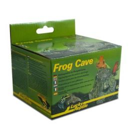 Frog Cave, Lucky Reptile.