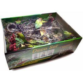 Deco Set Mantis, Lucky Reptile.