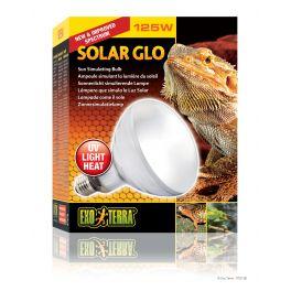 Exo Terra Solar Glo, varias medidas.