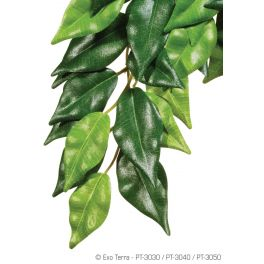 Exo Terra. Ficus (de seda) , Varios tamaños.